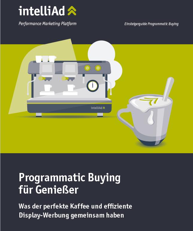 Vorschau Einsteigerguide Programmatic Buying
