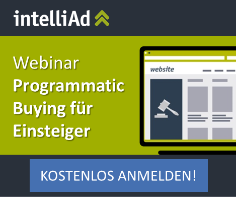Einsteigerwebinar Programmatic Buying